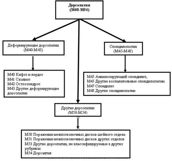 Формы проявления дорсопатии